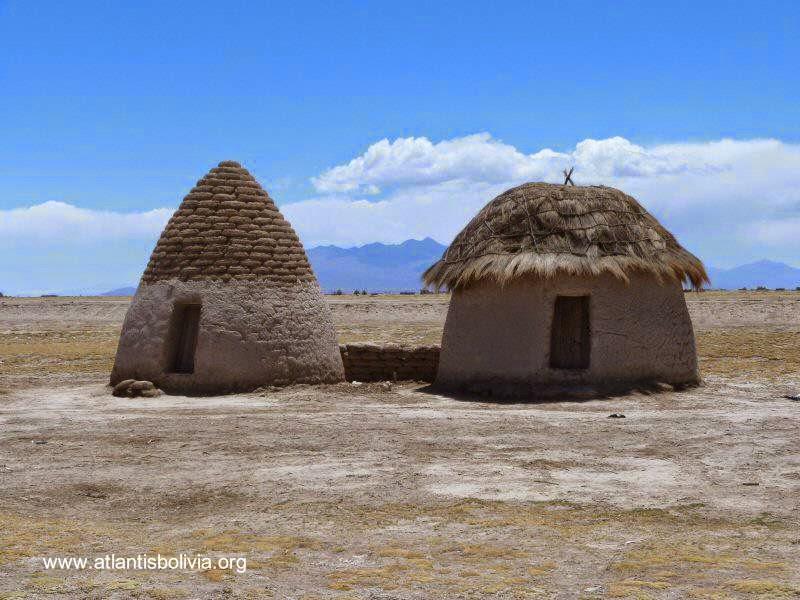 Putucus en el Altiplano