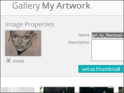 "The Image Properties area with ""set as thumbnail"" button"