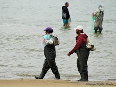 Pesca com Botos em Laguna