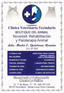 Clínica Veterinaria Vecindario