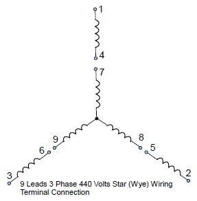 9 Leads Terminal Wiring Guide for Dual Voltage Star (Wye) Connected