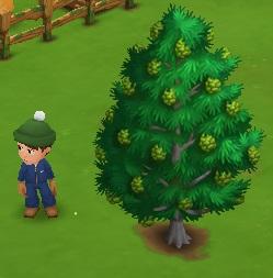 firefox tarafıcı ile farmville 2 oyununu aç. ( buradan indir