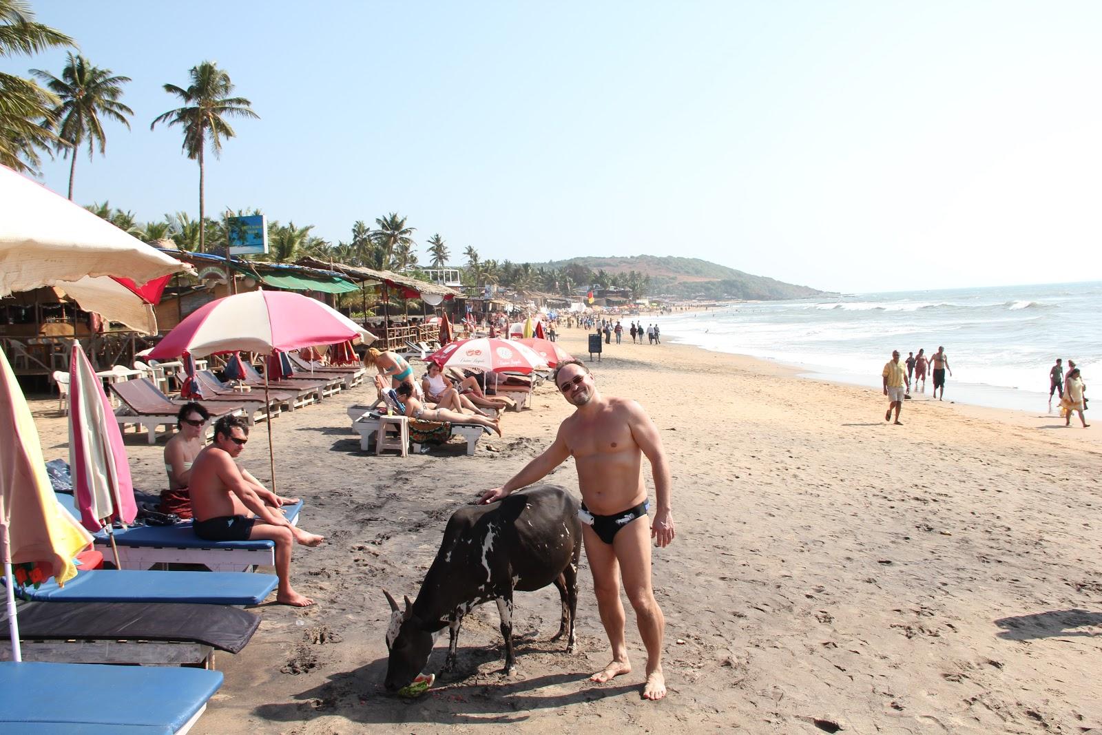 Голый пляжи гоа мысль