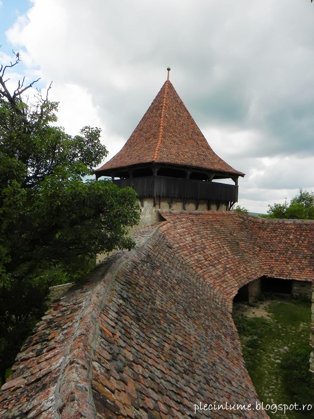 Acoperisul bisericii din Viscri