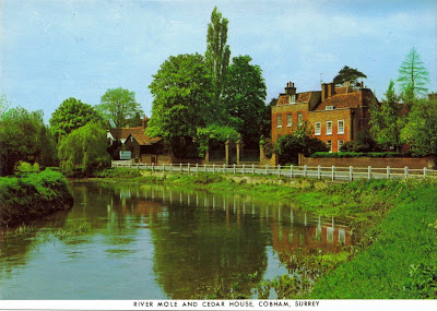 Postcard picture of River Mole Cobham Surrey England