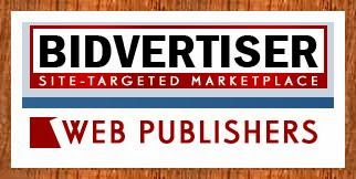 Bidvertiser-Publisher-Review