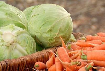 porsi makan harus seimbang dengan sayur