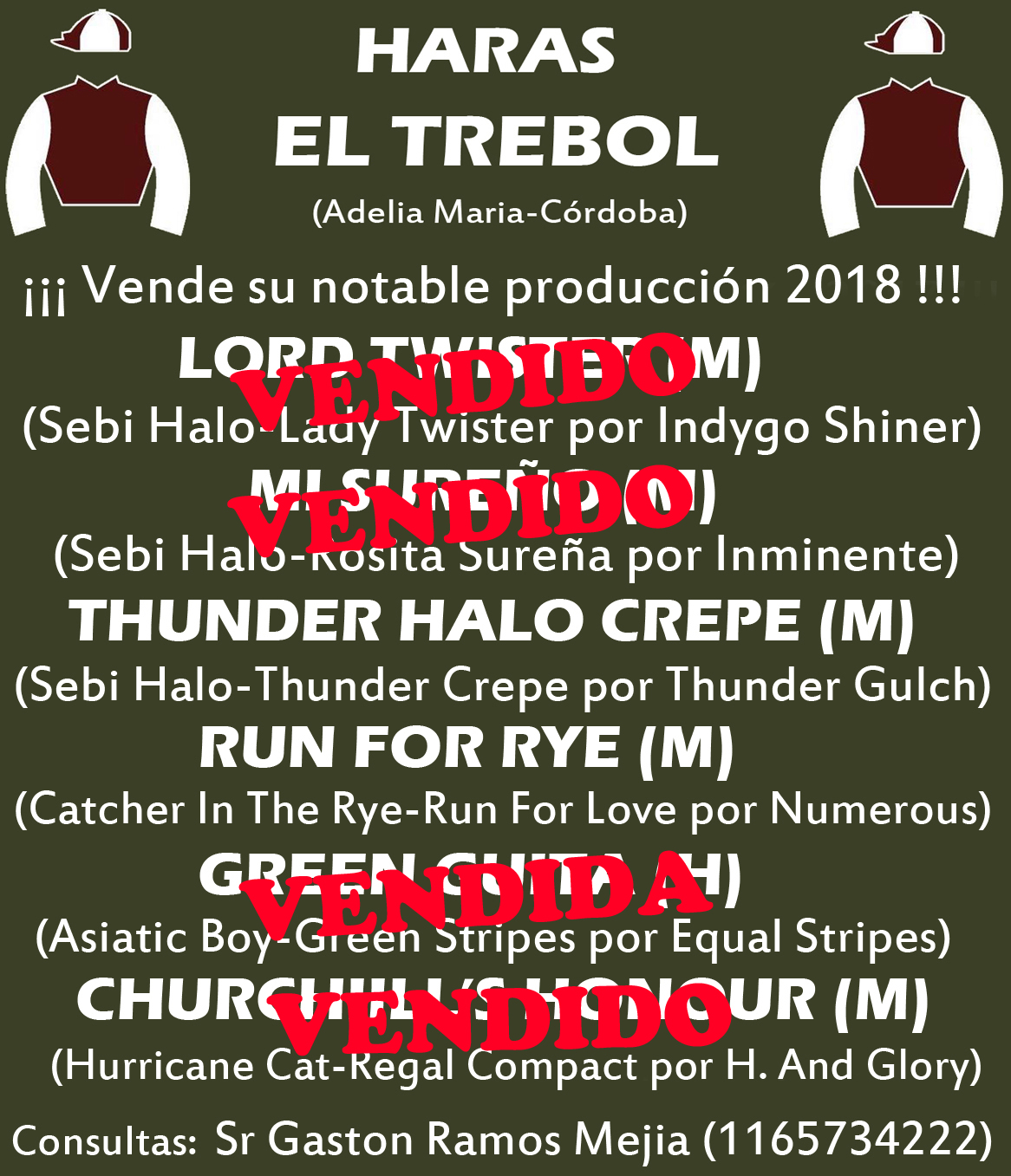 HS EL TREBOL - PROD 1 ED