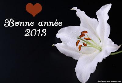 bonne année 2013 fleur