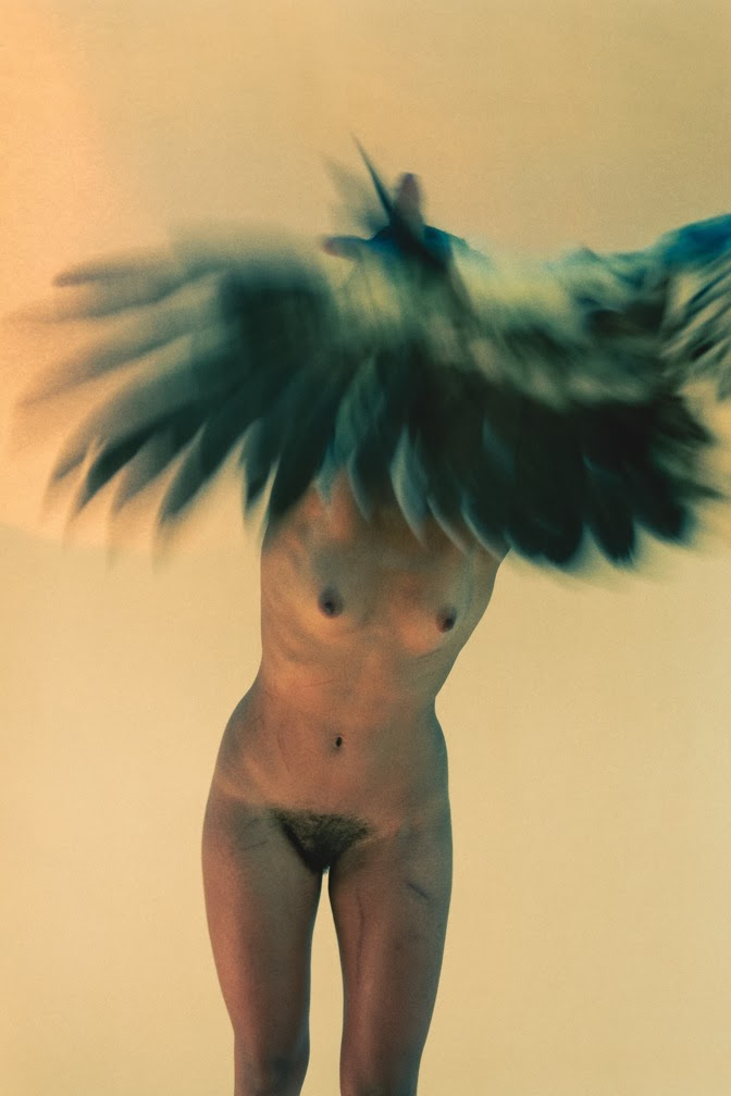 Ryan McGinley: Metamorphosis.