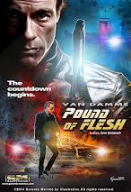 Điệp Viên Báo Thù (Pound of Flesh 2015)