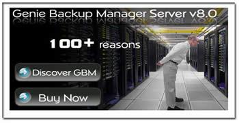 Genie Backup Manager Professional v8.0.312.482