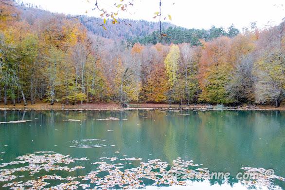 sonbaharda Nazlıgöl ve çevresindeki rengarenk ormanlar, Yedigöller Milli Parkı
