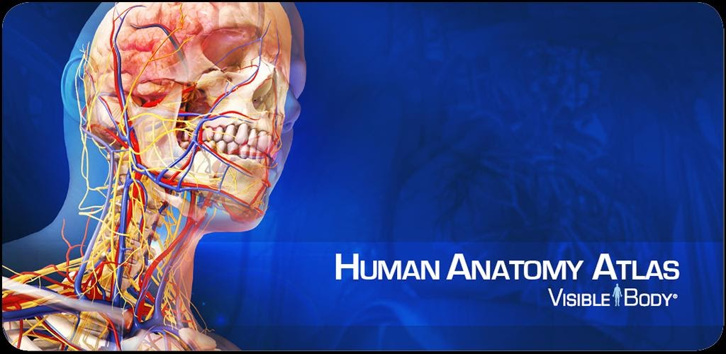 Android Cracked Apk Mania Human Anatomy Atlas V252 Apk Download