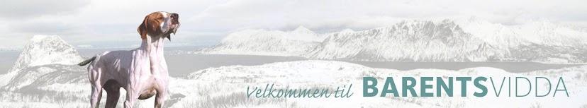 Barentsvidda