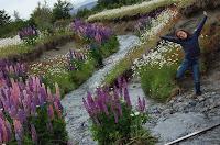 Patagonia, Chile, entrevista nuestra vuelta al mundo, blog nuestra vuelta al mundo, nuestra vuelta al mundo, vuelta al mundo, round the world, información viajes, consejos, fotos, guía, diario, excursiones
