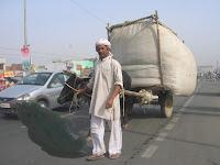 Carreta bueyes en autopista, Agra, India, vuelta al mundo, round the world, La vuelta al mundo de Asun y Ricardo