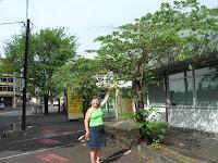 Frutos de Memiso, Tahití, Polinesia Francesa, vuelta al mundo, round the world, La vuelta al mundo de Asun y Ricardo