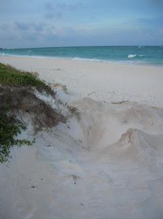 nido tortuga, playa caribe, tulum, hotel club tulum, riviera maya, cancun, caribe, mexico, vuelta al mundo, Asun y Ricardo, round the world,