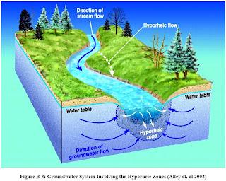 Stream Habitat Management Garrett Menichino Cee