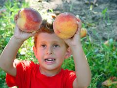 Nice Peaches