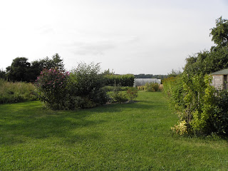 Part of the garden