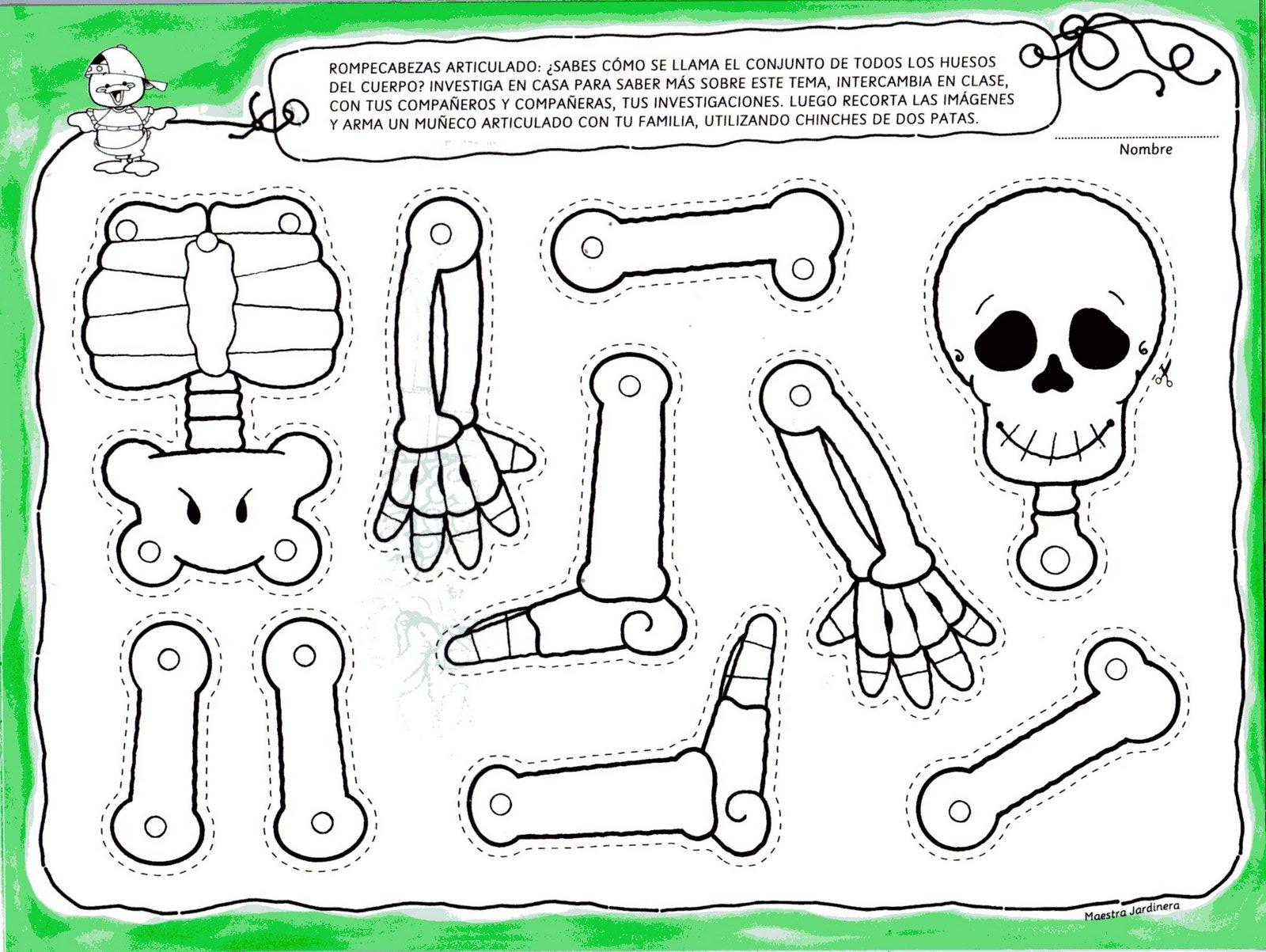 Как сделать скелет из бумаги схема