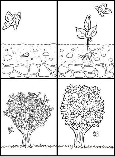 Frases Para El Dia De La Maestra Jardinera | apexwallpapers.com