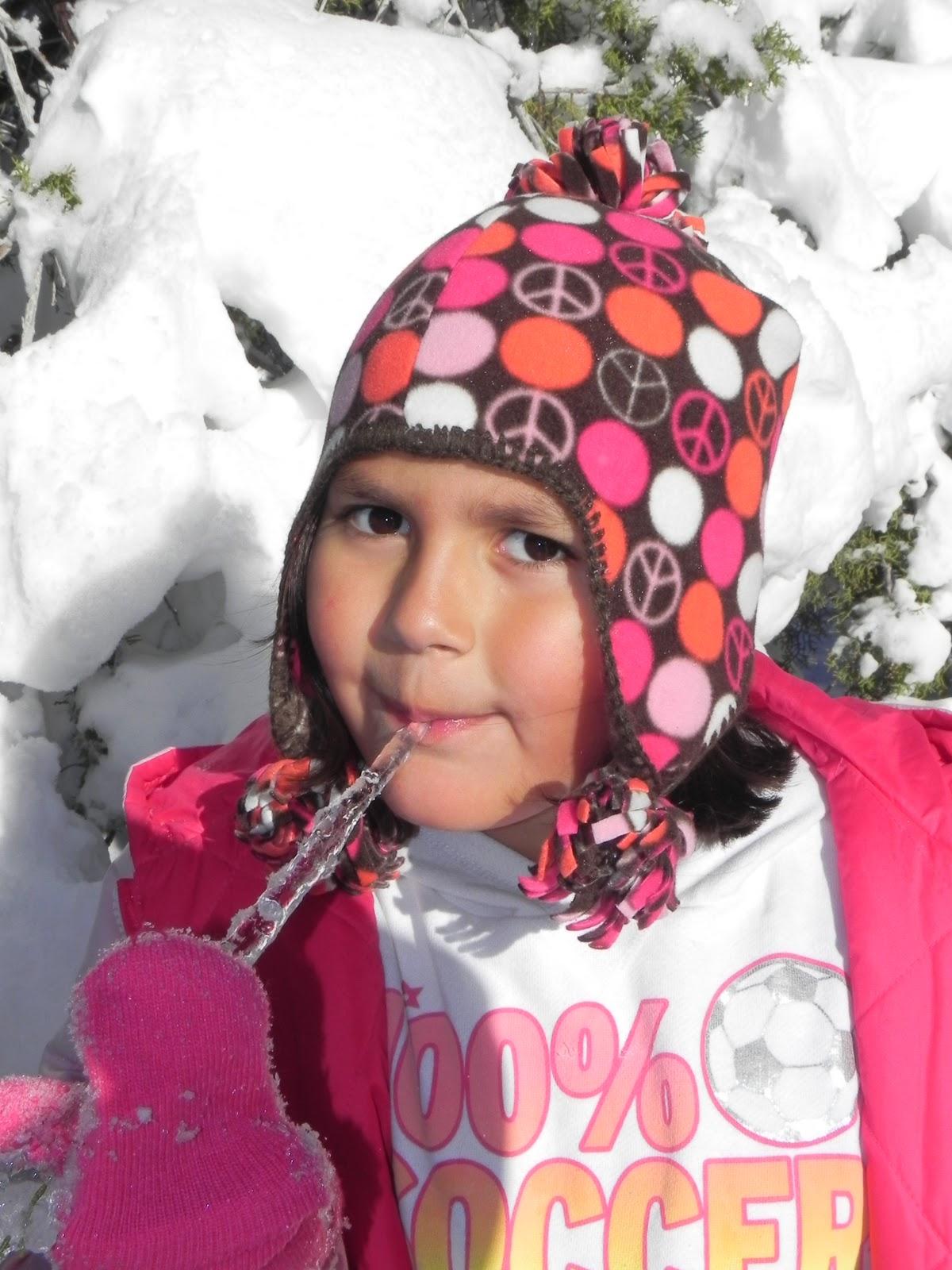 http://1.bp.blogspot.com/_-3jDwnpR3uY/TSACZI4uq3I/AAAAAAAAB88/_60gcScC75o/s1600/winter+2010+%257E+1-1-11+164.JPG