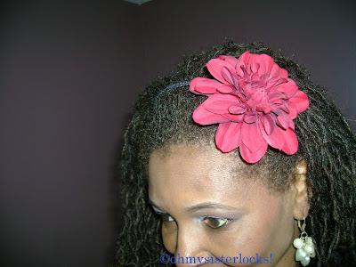 Oh My! Sisterlocks: December 2010