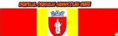 Drapelul orasului Sannicolau Mare
