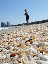MacArthur Beach State Park, Florida