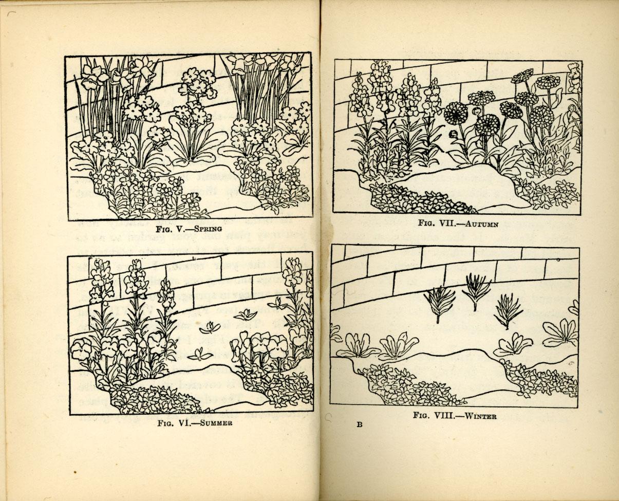 [GardeningGwynnSpd.jpg]