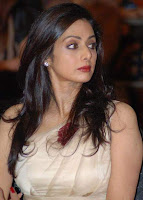Bollywood Sexy Girl Sridevi