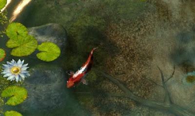 Screensaver Akuarium Ikan Koi FISH Efek 3D, Akuarium Ikan, Screensaver,  3D Screensaver kualitas grafik alami
