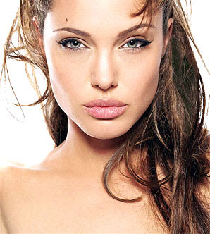 angelina jolie charity
