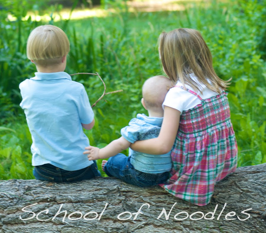 School of Noodles