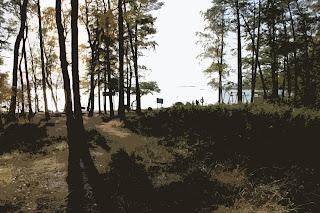 Ranta Lauttasaaressa, lokakuu 2009