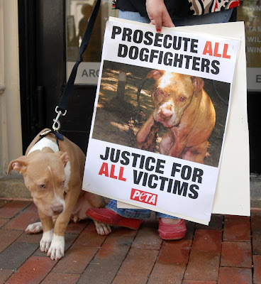 michael vick  dogfighting case
