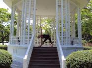 Ulla Steen - min yogainstruktør
