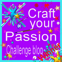 Craft You Passion winner