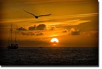 Poze apus de soare