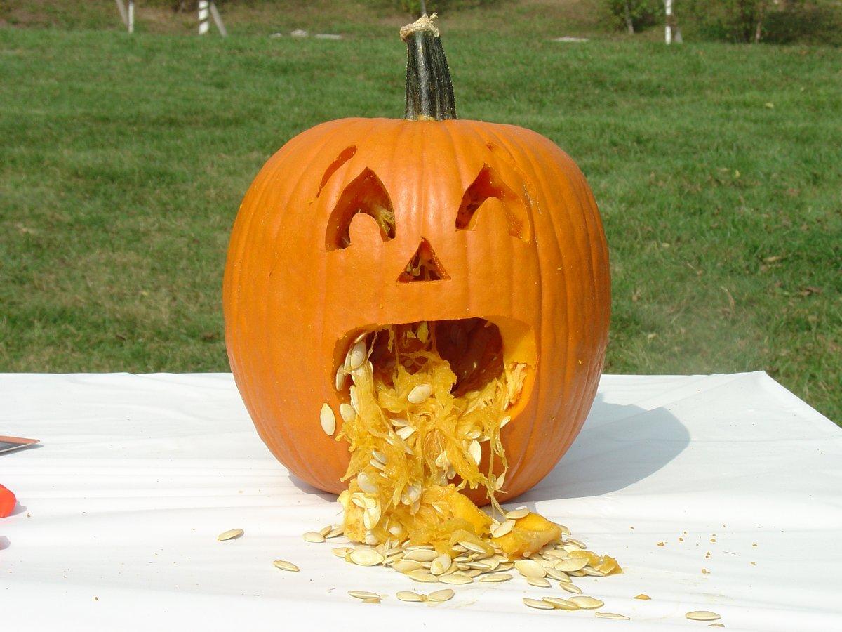 Pumpkin Throwing Up Dip Viewing Gallery