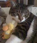 Jazzy & Daisy Boo duckie