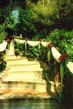 Ceremony Aisle at the Inn of the Seventh Ray