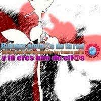 AMIGOS DE LA RED