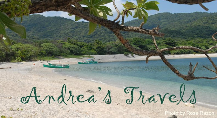 Andrea's  Travels