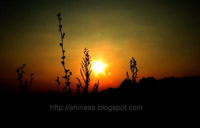 закат, солнце, небо