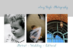 My Favorite Chicagoland Photographer