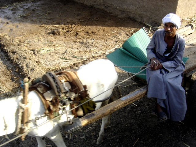 Agriculto y su transporte.